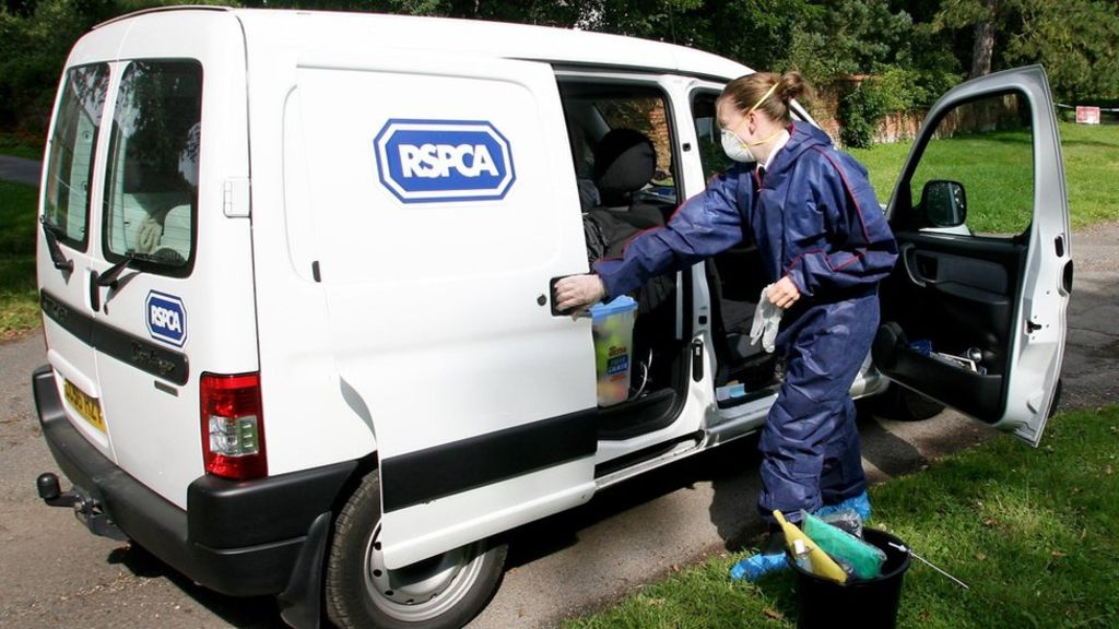 RSPCA could lose powers of prosecution
