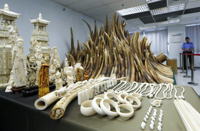 Hong Kong to phase out local ivory trade by 2021