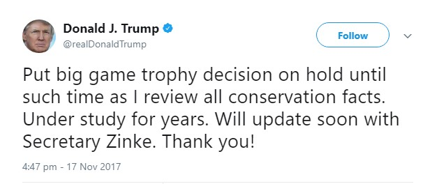 Trump says he has put big-game trophy decision on hold
