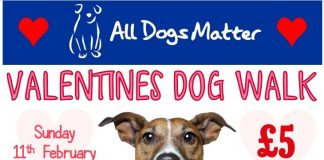 All Dogs Matter Valentines Walk