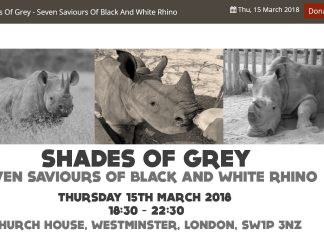 Helping Rhinos Shades of Grey