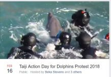 Taiji Action Day for Dolphins Protest 2018